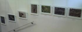 Exposition photo, médiathèque de Meudon | ©Fabien Virey